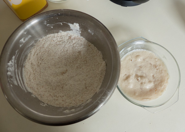 Proofed yeast ready to add to flour